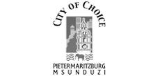 Msunduzi logo